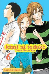 Kimi ni Todoke: From Me to You, Vol. 4 v. 6 From Me to You